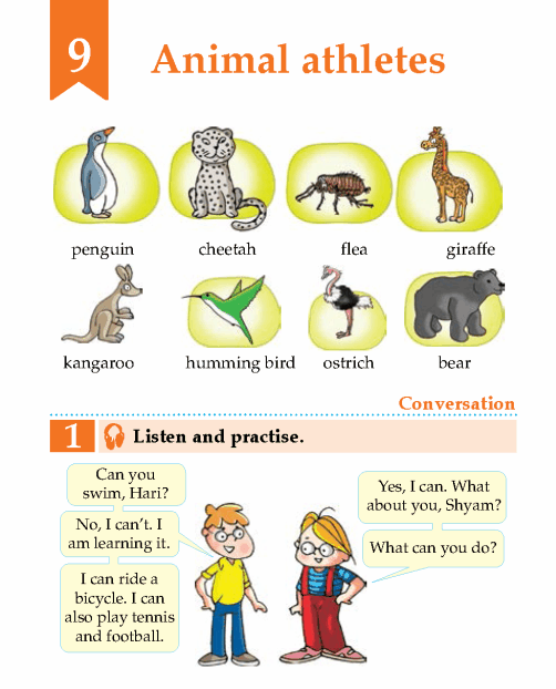 English Lesson Grade 2 Animal Athletes
