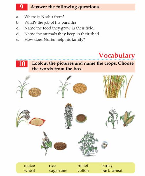 english  - grade 4_page_(9)