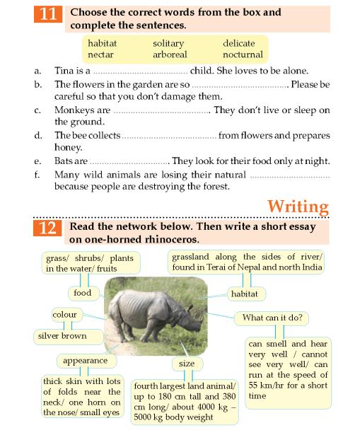 english  - grade 5_page_ (67)